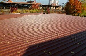 Peganox farba na dachy
