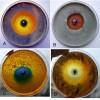 Biocontrol of pathogenic fungi growing in vitro by galvanic microcells